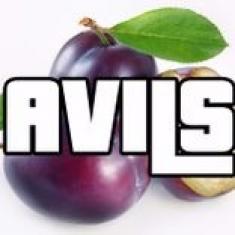 Avils714