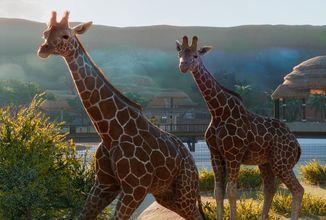 Péče o zvířata hlavním tématem nových gameplay záběrů z Planet Zoo