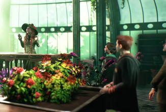 Vývoj Hogwarts Legacy opouští vedoucí designér