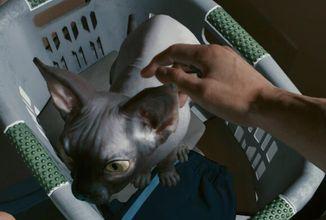 V Cyberpunku 2077 můžete mít kočku jako mazlíčka