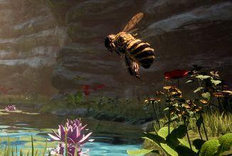 Podívejte se na svět ze včelí perspektivy
