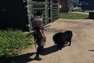 Aktualizace Ghost of Tsushima přidá psí společníky