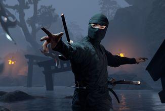 Ninja Simulator připomíná spíše akční adventuru nežli hardcore simulátor