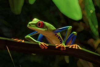 Planet Zoo získá jihoamerický DLC balíček