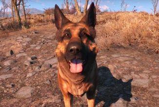 Další etapou Falloutu 76 budou domácí mazlíčci