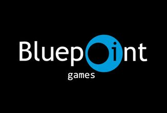 Bluepoint Games (0)