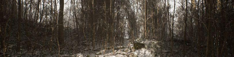 Hororovka Abandoned opět vystrkuje růžky